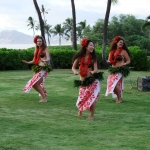 A Hula Hula welcome for the 2014 MEHSA Reunion.